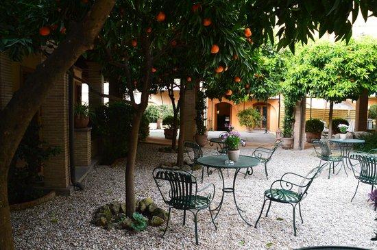 Hotel Santa Maria: Eat al fresco under the orange trees