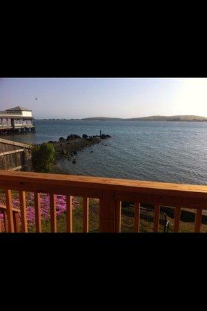 Bodega Harbor Inn: Wow :)