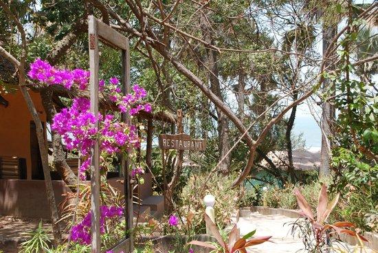 Nemasu Eco-lodge: Reception area