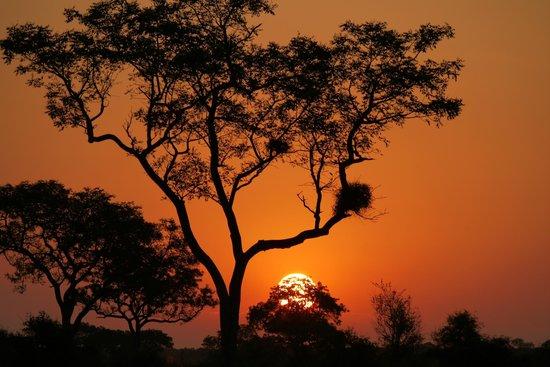 Imbali Safari Lodge : kruger game drives areas