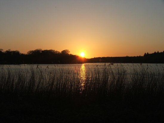 Virginia Water sunset