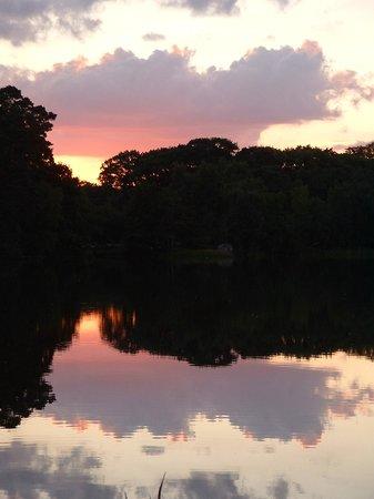 Amazing Virginia Water sunset
