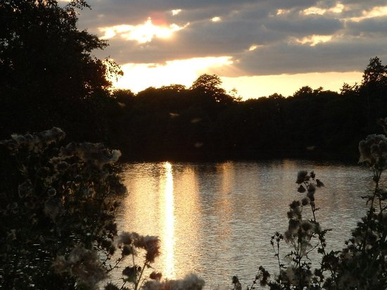 Virginia Water sunset