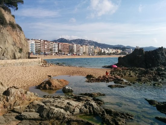 Hotel Alba Seleqtta: beach view