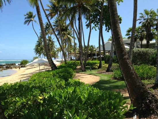 Dorado Beach, a Ritz-Carlton Reserve: Path to breakfast