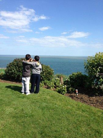 Fabulous views of shanklin coastline from the Carlton Hotels award winning cliff top gardens!