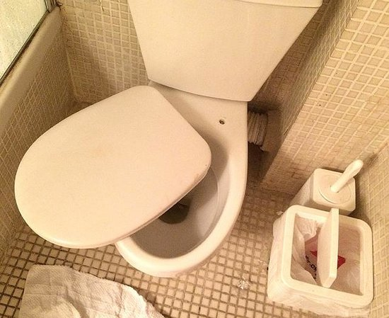 The Ophir Hotel : Broken toilet