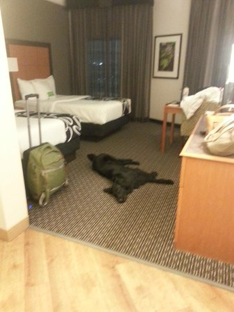 La Quinta Inn & Suites Macon: Wood look tile in entry to double bed room