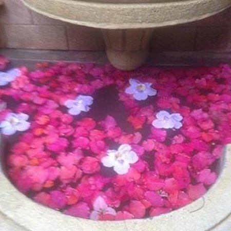 Hotel Casa Gabriela: Fountain Downstair that had fresh flowers daily