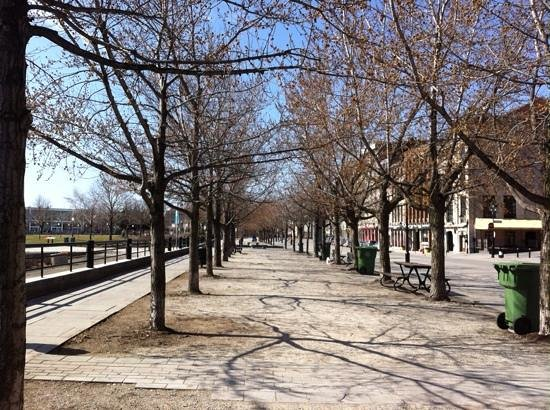 Auberge du Vieux-Port: Promenade printanière sur la rue De la Commune ...