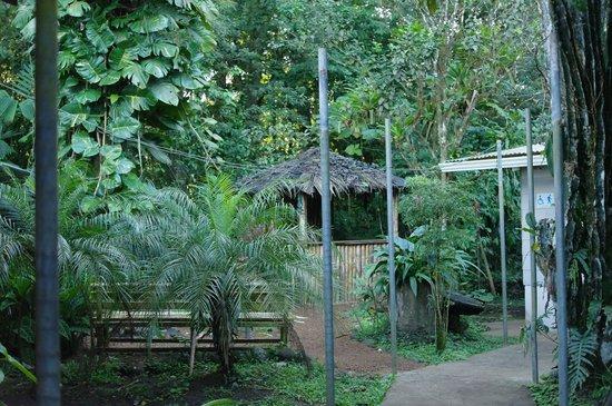 Finca Verde Lodge: Tiki Bar smoking area