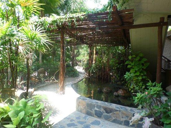 Ko Tao Resort : Pasillo del hotel