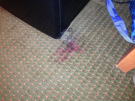 Econo Lodge : Carpet stain