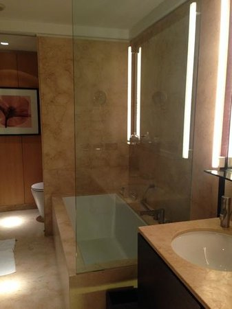 Palacio Duhau - Park Hyatt Buenos Aires: Bath with separate shower and tub.