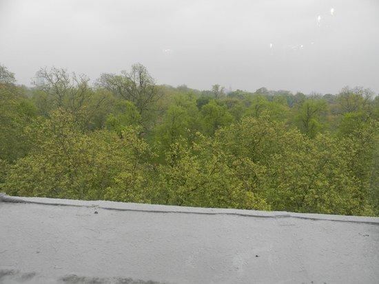 Thistle Hyde Park: view