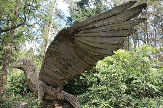 The Sculpture Park: An amazing bird of prey