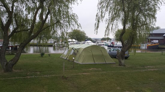 Waveney River Centre: Coot pitch by the marina