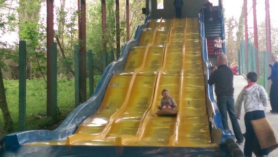 Westport House & Pirate Adventure Park : Great fun for all ages