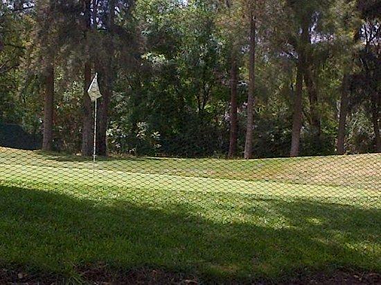 Hotel Real del Bosque: Campo de Golf