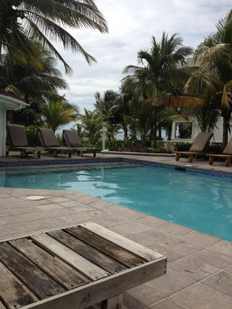 Paradise Villas: Pardise Villas pool and view to ocean