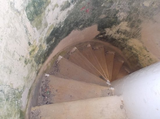 Mermaid Boat Trips: Lighthouse stairs - tread carefully!