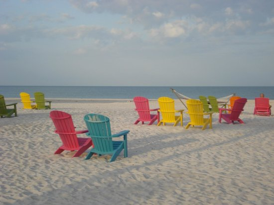 Plaza Beach Hotel - Beachfront Resort: Beach & Beach chairs in front of hotel