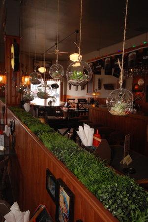 Duffy's Famous Fish & Chips : Terrariums Succulents for sale!