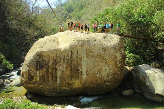 Canopy River : Penúltima línea de tirolesa