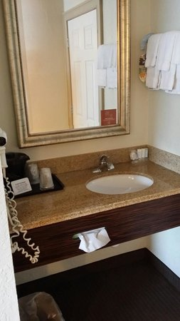 Sleep Inn Tampa: Sink aera