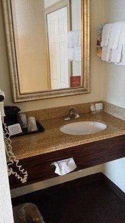Sleep Inn Near Busch Gardens/usf: Sink aera