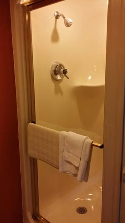 Sleep Inn Tampa: Shower - it's big n round