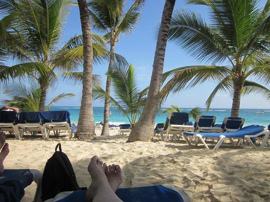 Occidental Caribe : Love this beach
