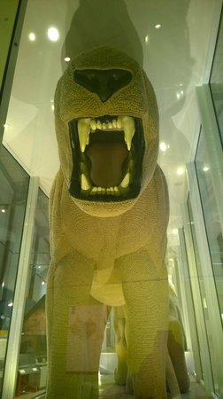 Snibston Discovery Museum and Country Park: Roar!