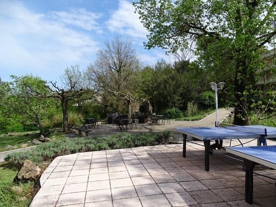 Ibis Antibes Sophia Antipolis : giardino