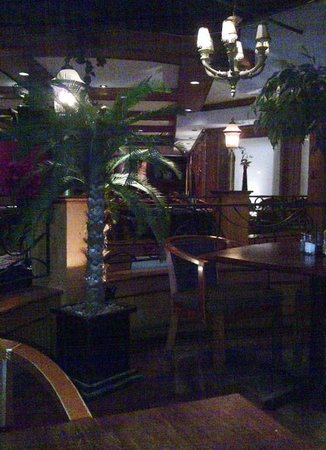 Niche Lounge: I almost felt I was in a tropical location!
