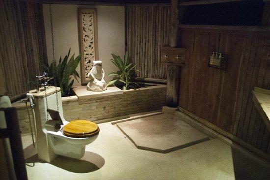 Nikoi Island : The toilet