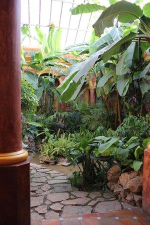 Hotel Casa Mexicana : Invernadero