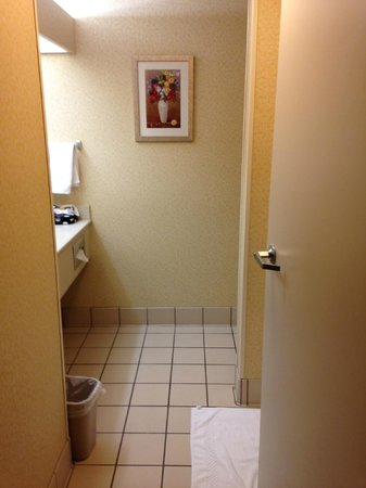 Fairfield Inn & Suites Clearwater : Bathroom-sink in the bathroom but lots of counterspace