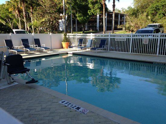 Fairfield Inn & Suites Clearwater: Pool