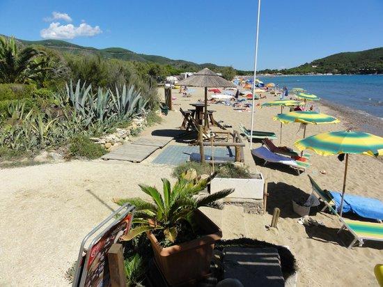 Camping Appartamenti Tallinucci: Bucht von Lacona