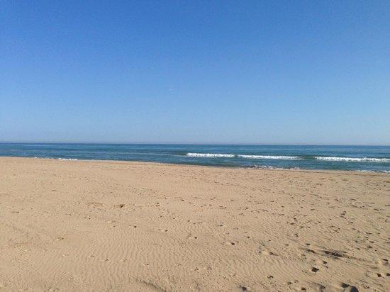Chiringuito Carita Morena : Playa, vista desde la silla