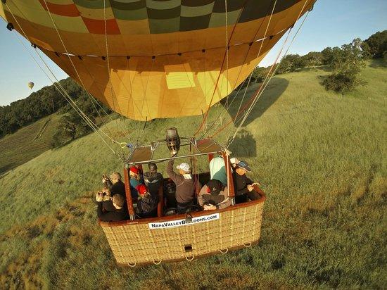 Napa Valley Balloons, Inc. : Napa Valley Balloons Inc.