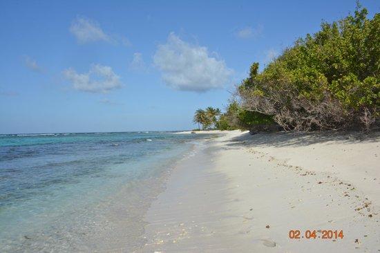 Petit Tabac: la spiaggia