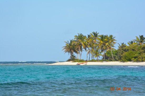 Petit Tabac: l'isola