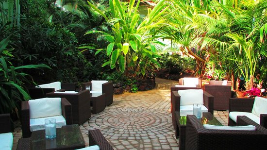 R2 Rio Calma Hotel & Spa & Conference : Botanical garden in hotel