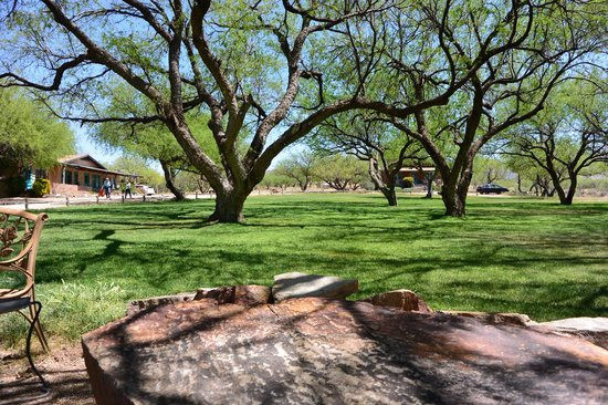 Circle Z Ranch: Mesquite Grove, great for a quiet book