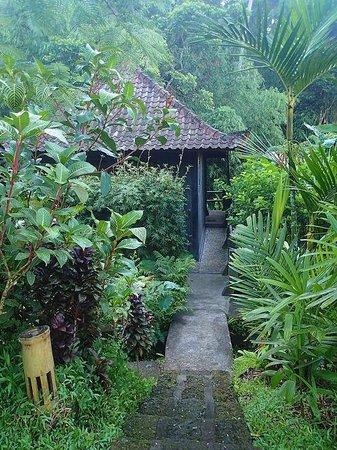 Bali Eco Stay Bungalows: Buddha bungalow