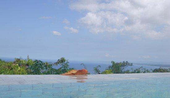 La Mariposa Hotel: vista en la píscina