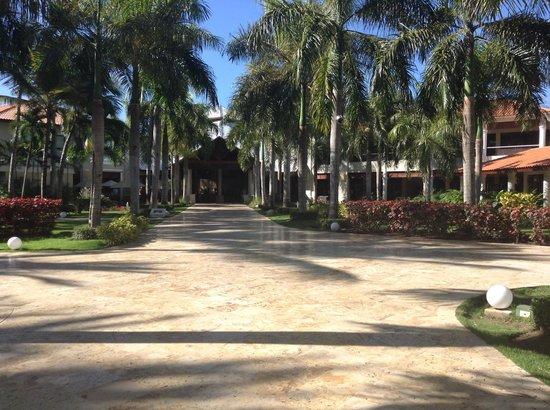 Dreams Palm Beach Punta Cana : Looking towards the main lobby