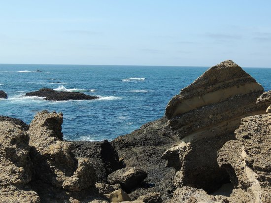 Point Lobos State Reserve: Point Lobos